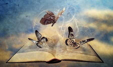 Книги и бабочки