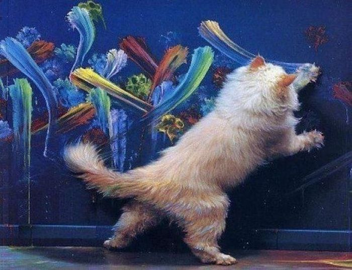 Рисующий кот