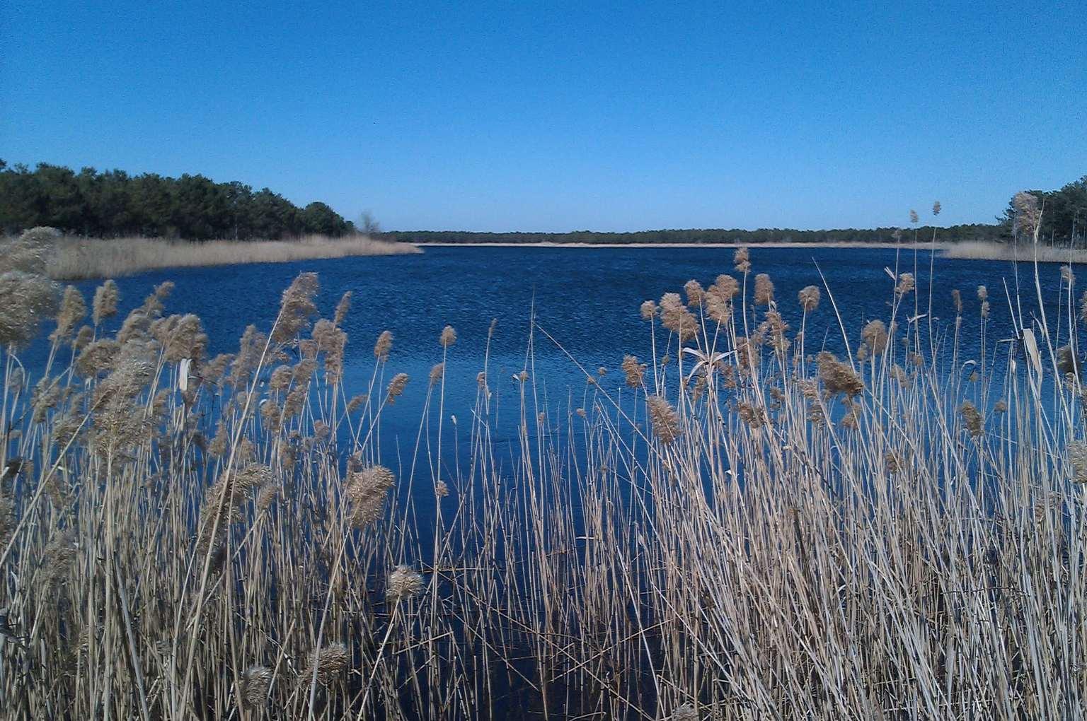 Озеро возле Вилково