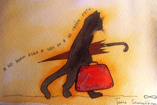 Идущий кот