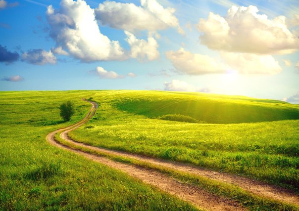 Дорога в степи