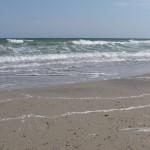 Морской восторг