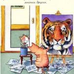 Тигровый взгляд