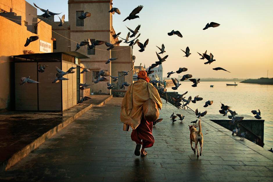 Путник и голуби