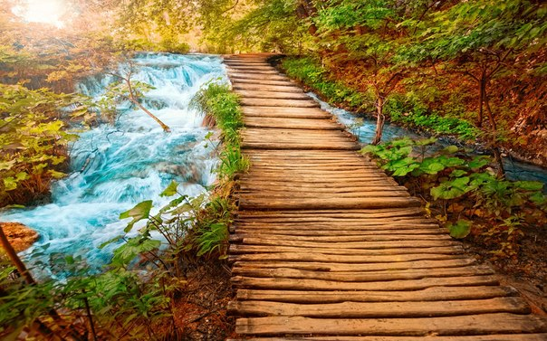 Мост и реки