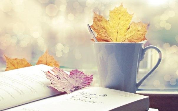 Осень в чашке