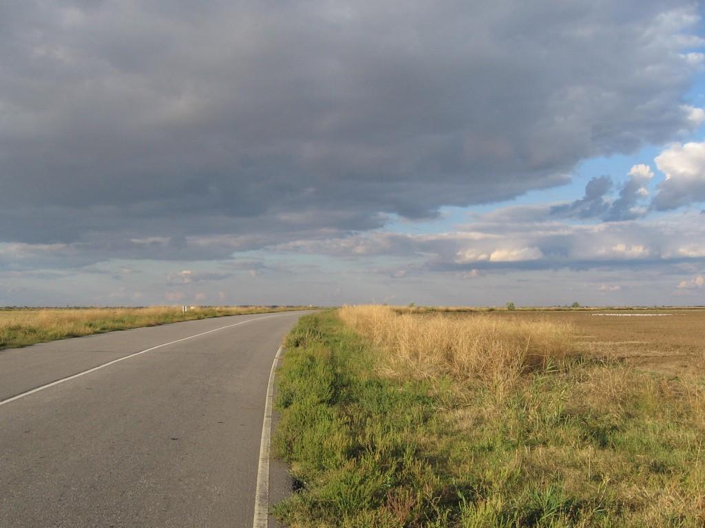 Дорога на Рени