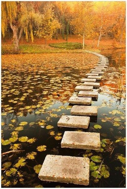 Дорожка через пруд
