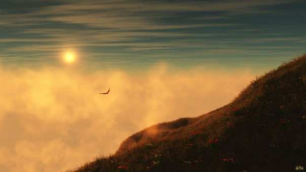 Полёт в облаках