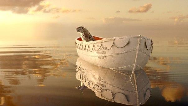 Тигр в лодке