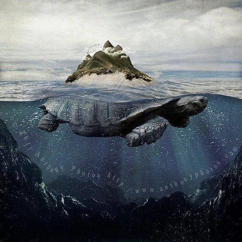 Черепаха держит на чебе мир