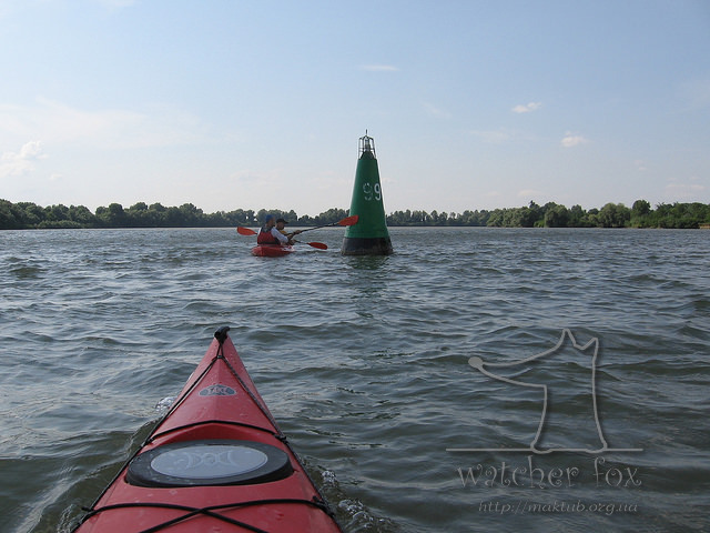Каякинг на Дунае