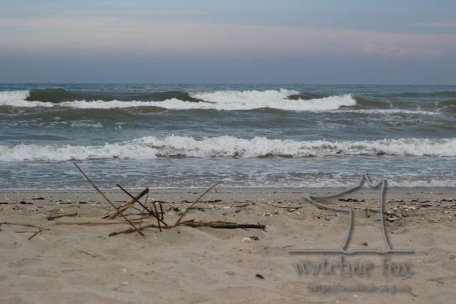 Чёрное море. Катранка