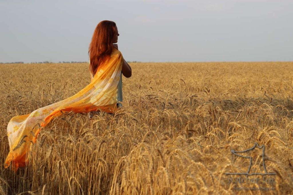 Ариша в пшенице