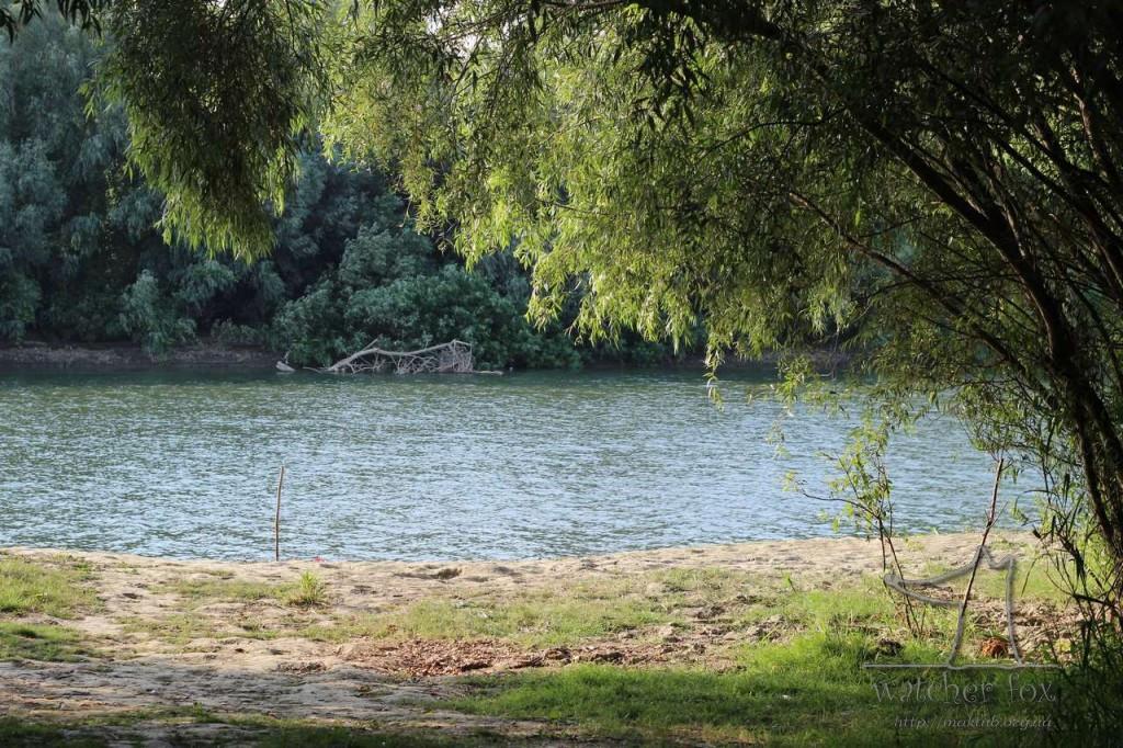 Возле Дуная