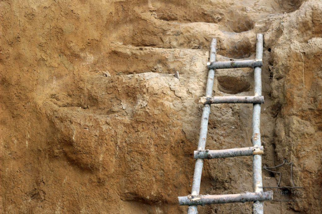 Лестница  из веток